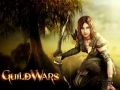 guildwars_wallpaper_08
