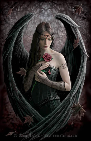 angel_rose_by-anne-stokes